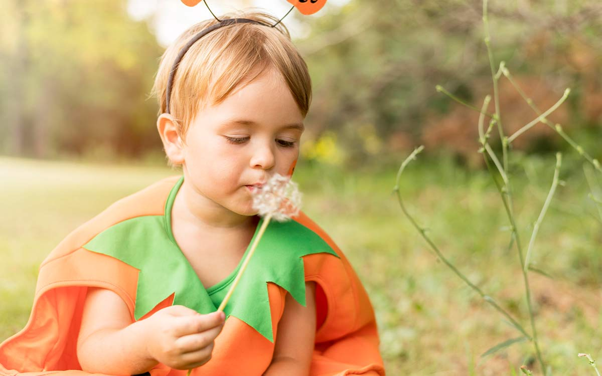 A young boy dressed as a pumpkin for Halloween is sat outside blowing the seeds of a dandelion.