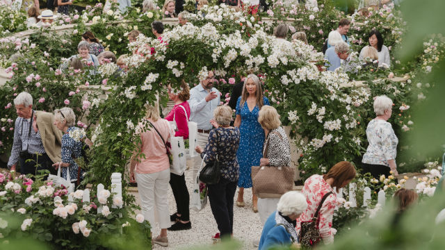 The Chelsea Flower Show in Chelsea.