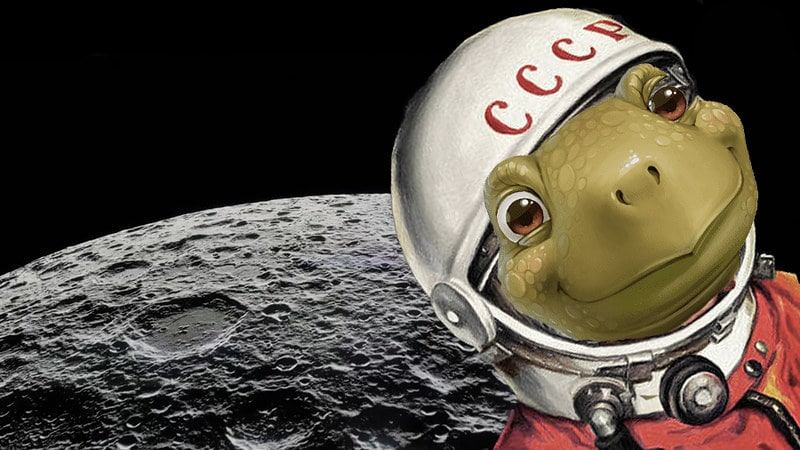 Tortoise astronaut wearing a helmet, posing with the moon in the background.