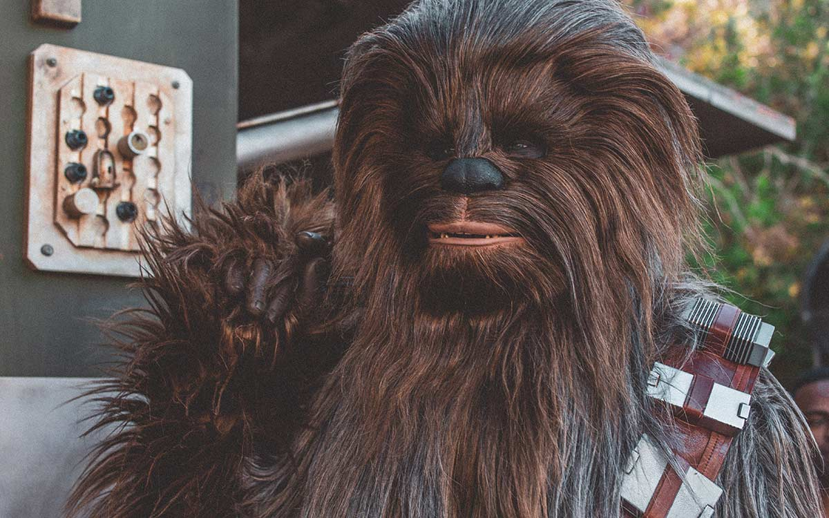Chewbacca, from Star Wars.