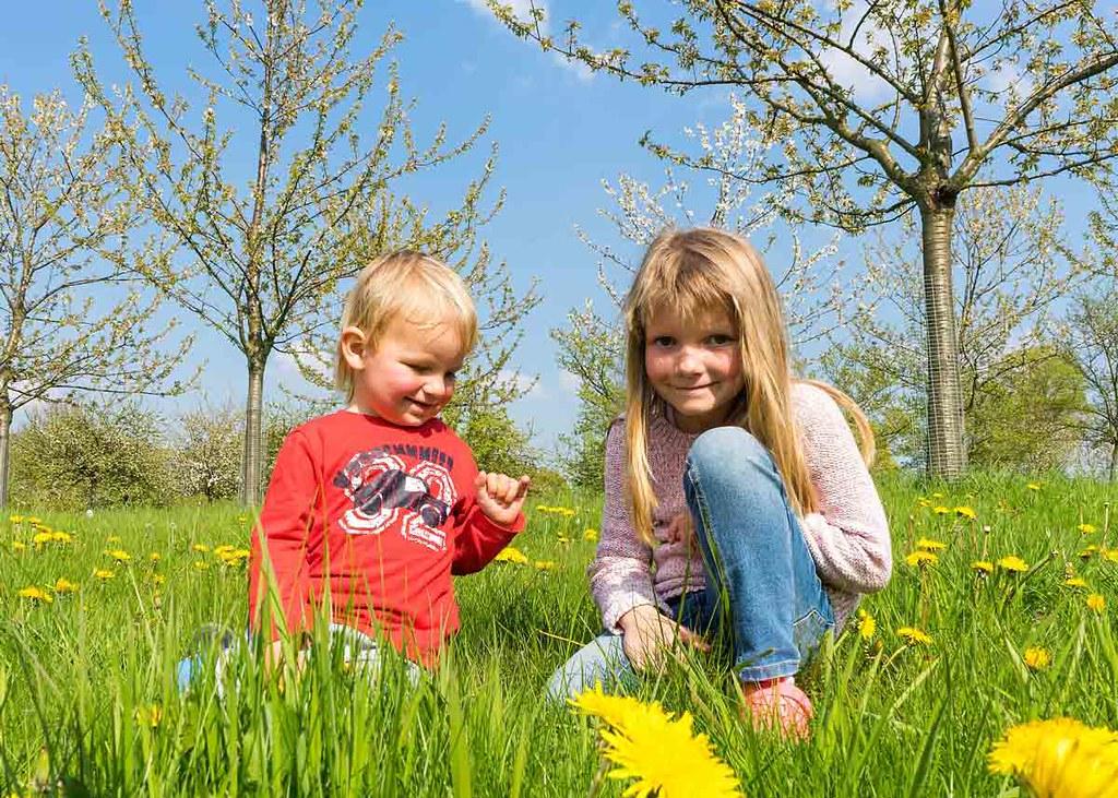 Two kids are standing in a field at spring time smiling at the camera, they are surrounded by flowers and blossom trees.