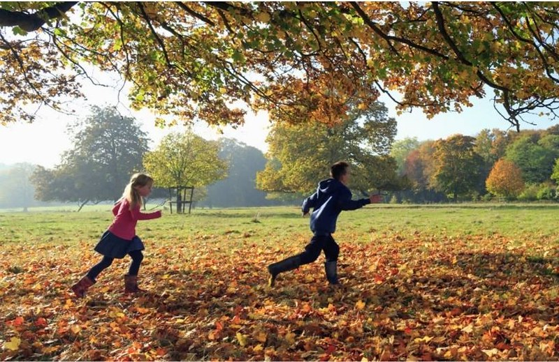 Children playing in autumn leaves.