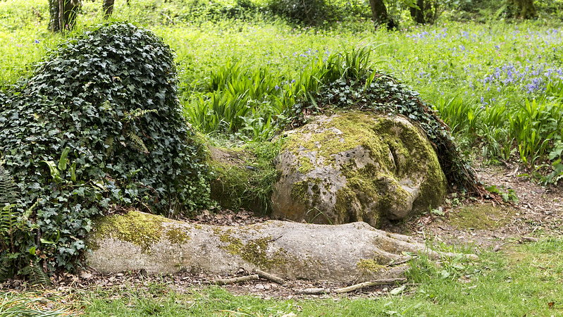 Lost Gardens of Heligan laying statue growing out the ground, leaves on it.