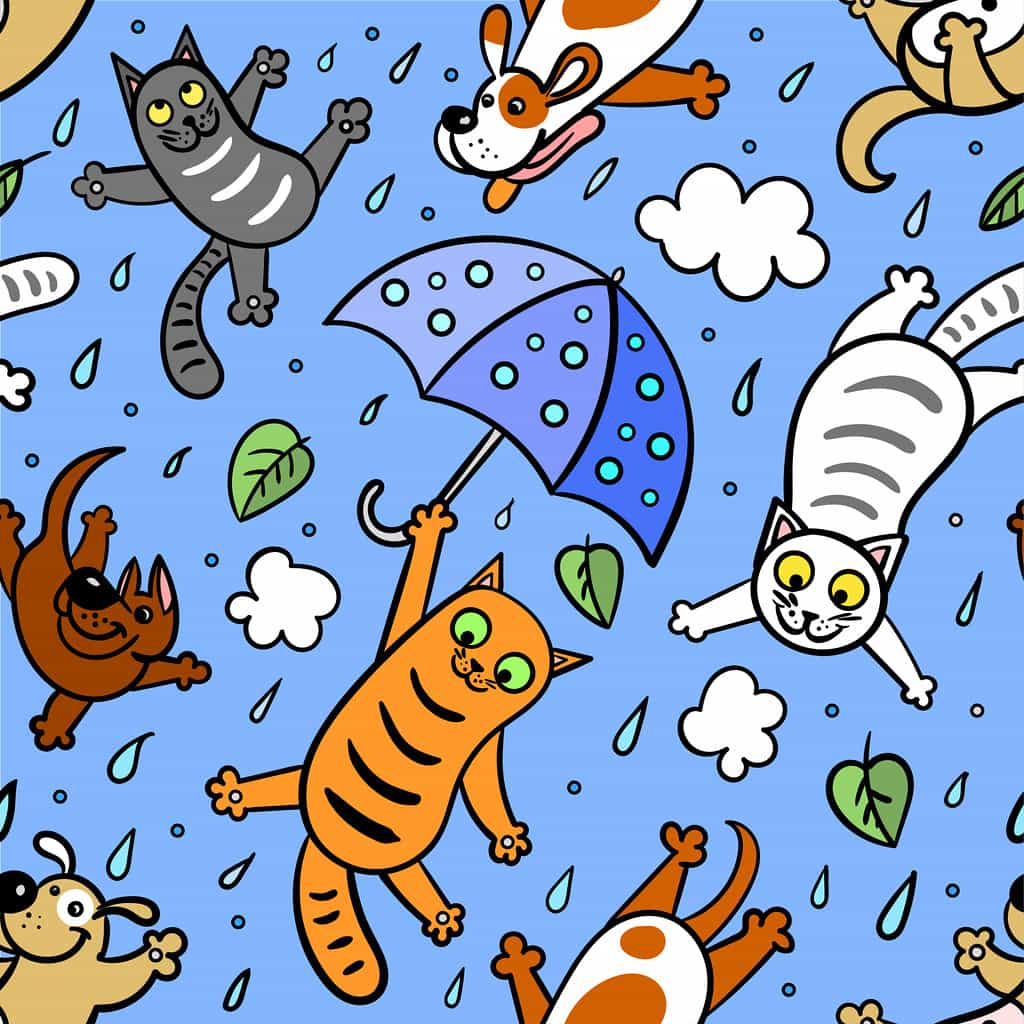 An animation of it raining cats and dogs - the animals falling from the sky with umbrellas - to help explain to kids.