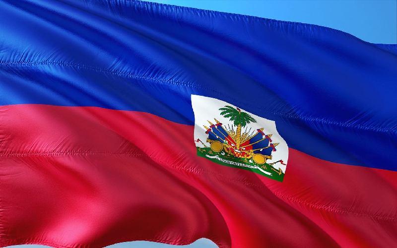 The official Haitian flag.