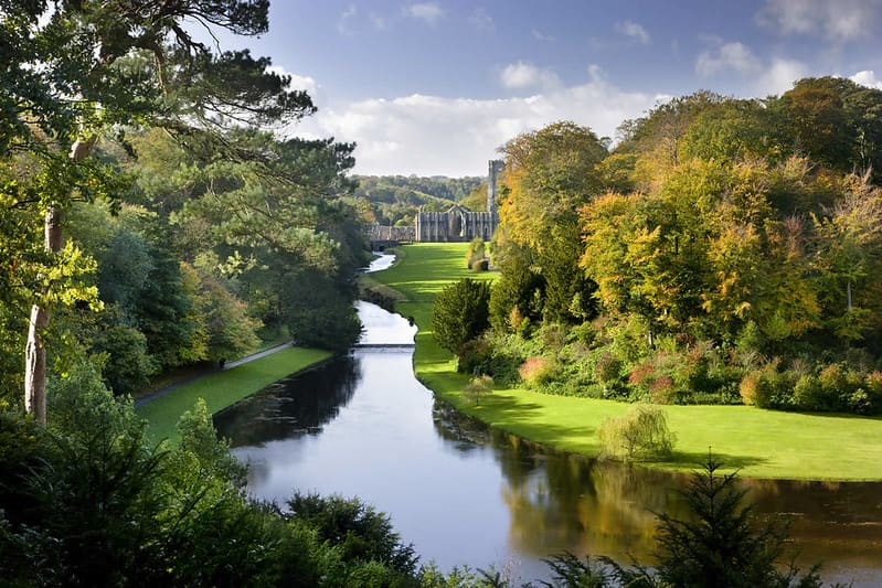 A stream surrounded by trees in the Fountains Abbey and Studley Royal Water Garden.