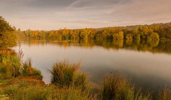 A lake surrounded by trees at Clifton Country Park.