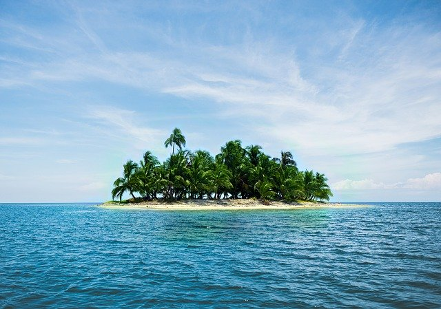 An island covered in palm trees in the middle of the sea.