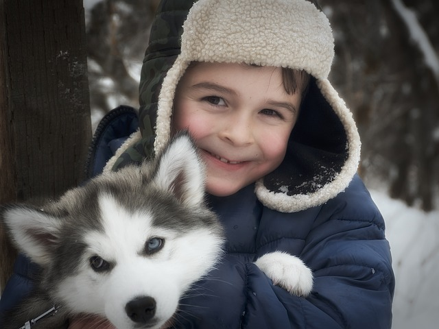 Giggling boy happily hugging his pet Husky puppy.