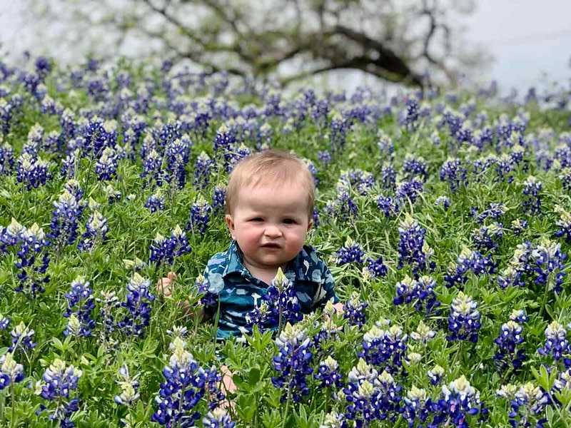 Flower names for boys are unique and special as they carry the meaning of something we all know and love.