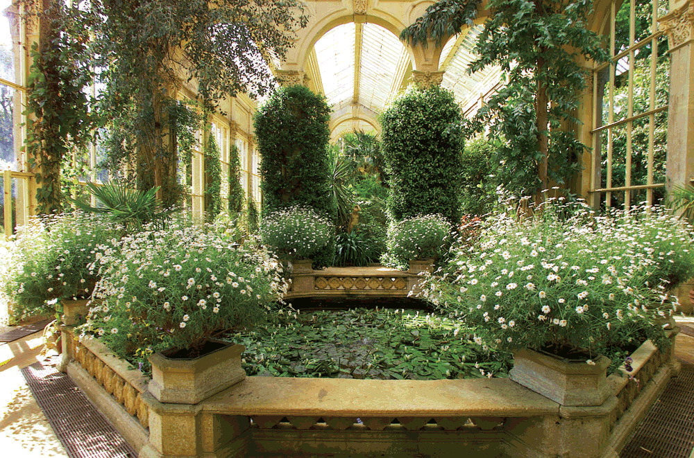 The inside of the glass Orangery at Castle Ashby Gardens, filled with plants and a pond.