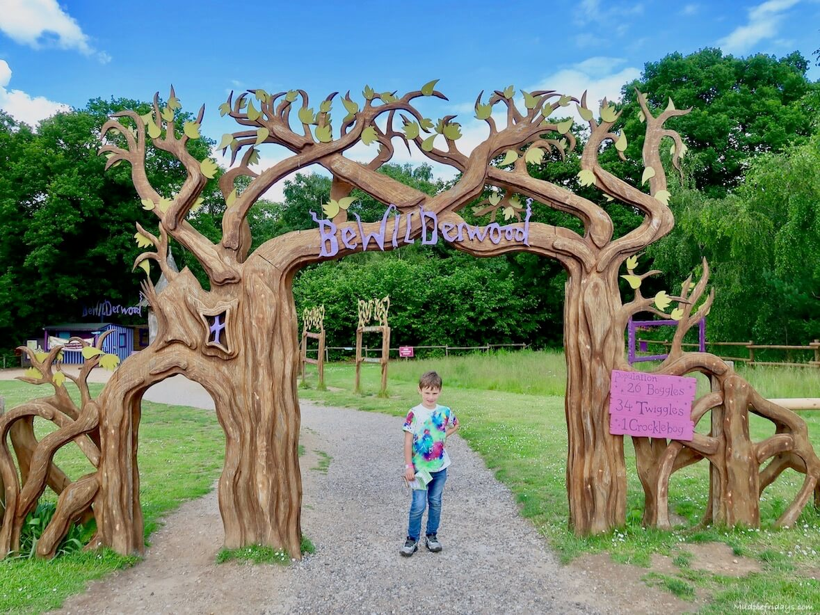 Child in front of the entrance at BeWILDerwood, made up to two trees coming together.