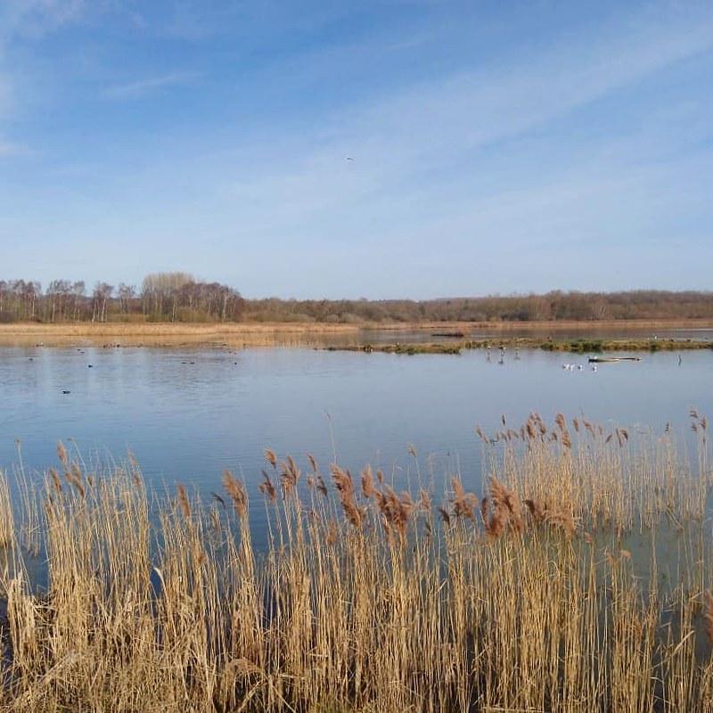 Blue lake and sky at Rutland Water Nature Reserve.