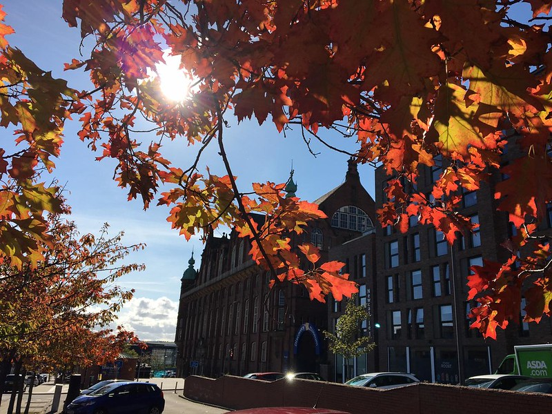 Autumnal trees and Discovery Museum exterior.