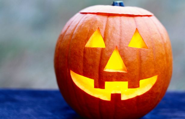 Everyone should get the chance to know how to carve a pumpkin for Halloween.