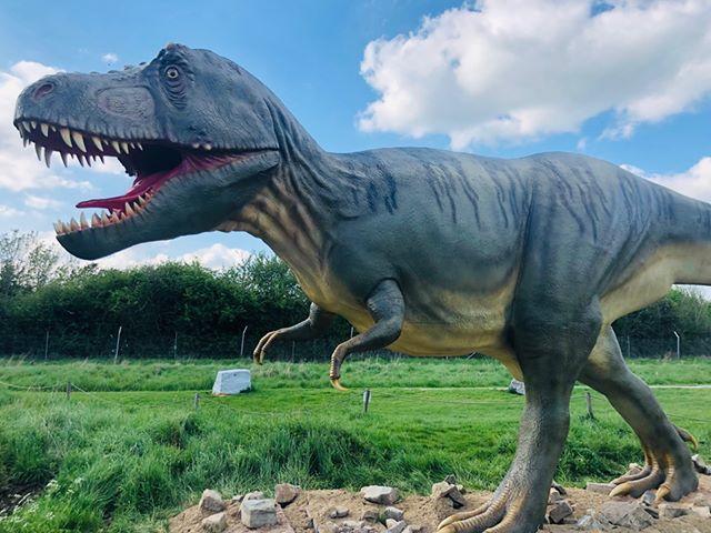 The T-Rex figurine on the Dinosaur Walk.