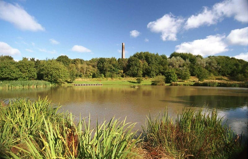 The large pond and surrounding greenery at Baggeridge Country Park.
