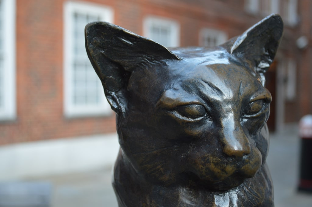 Follow our cat sculpture trail around London to see some cute feline statues you may not have known about.