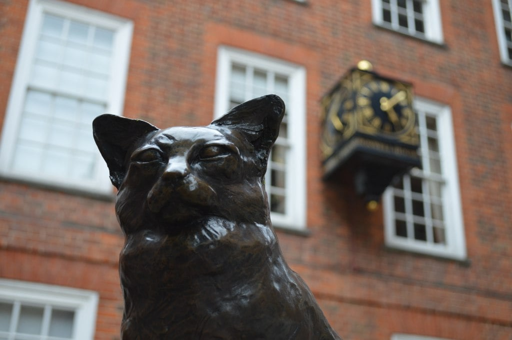 See if you can find Hodge the Lexicographical Cat on the cat trail of London.