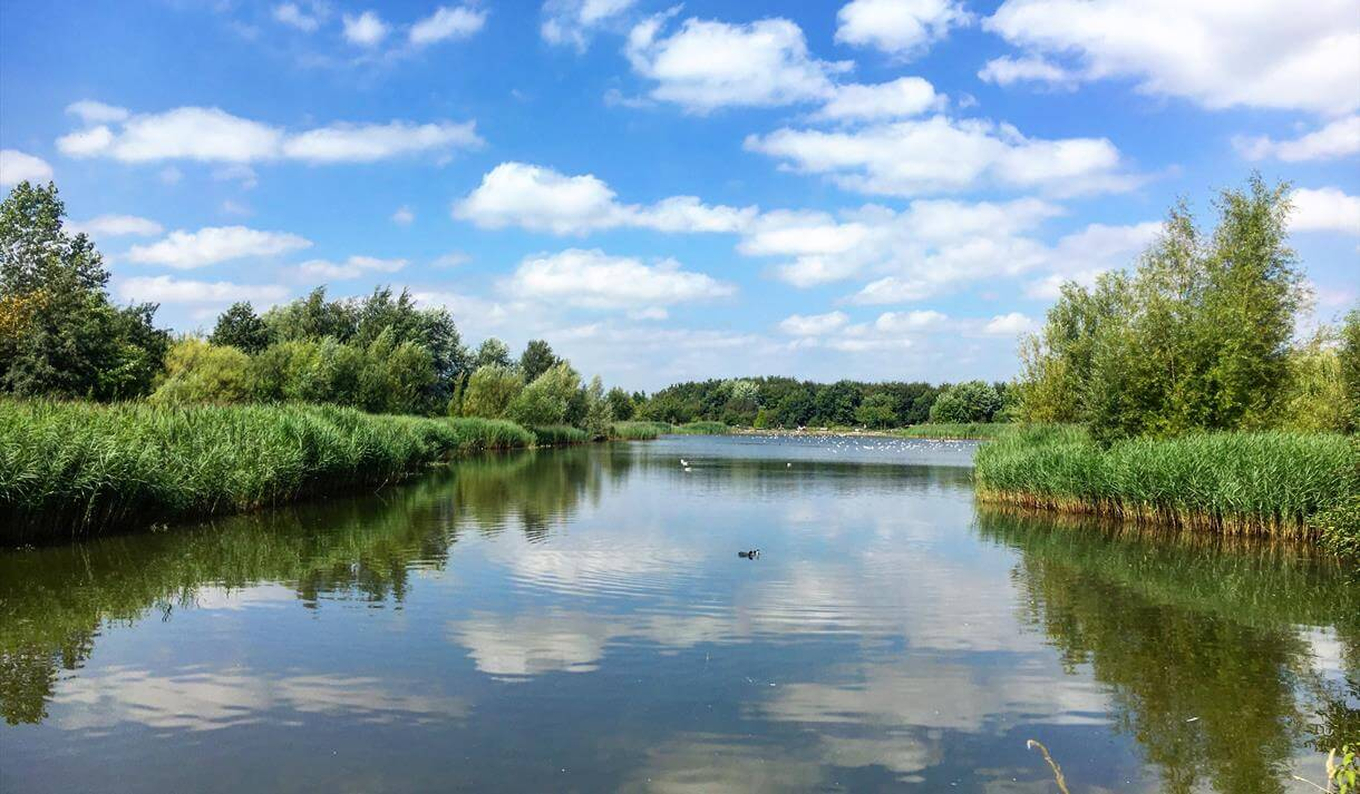 A view of the lake and the surrounding grassy area at Rushcliffe Country Park.