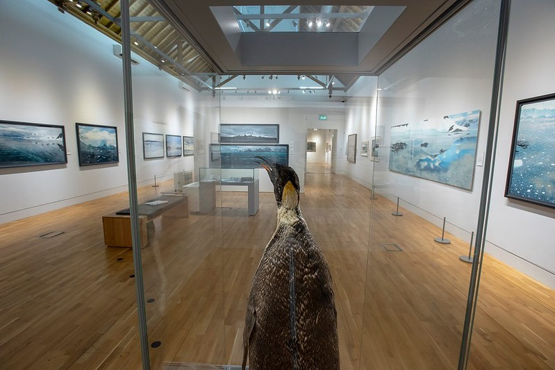 A sea-life exhibit at The McManus Art Gallery & Museum.