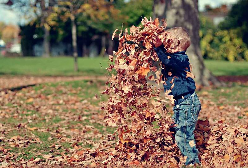 Autumn is a time for celebration, and these nature-inspired autumn baby names do just that.