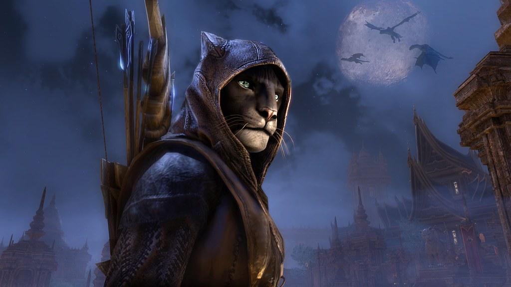 Khajiit is a popular choice in The Elder Scrolls.