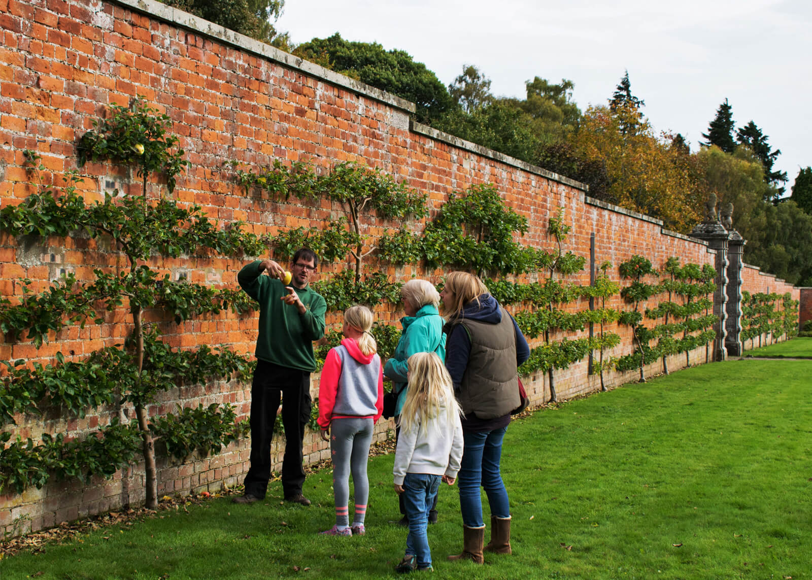 A family learning about the plants on the red brick wall at the Walled Garden at Glamis Castle.