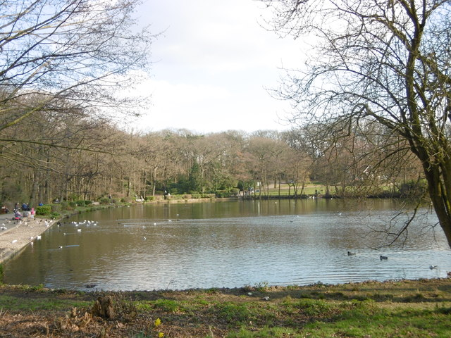 The boating lake and trees at Grovelands Park.