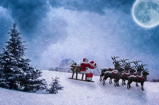 The names of Santa's reindeer are very famous.