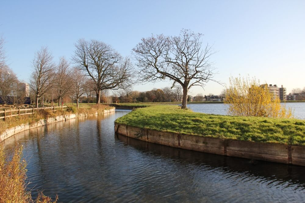 A view of the river at Woodberry Wetlands against a blue sky.