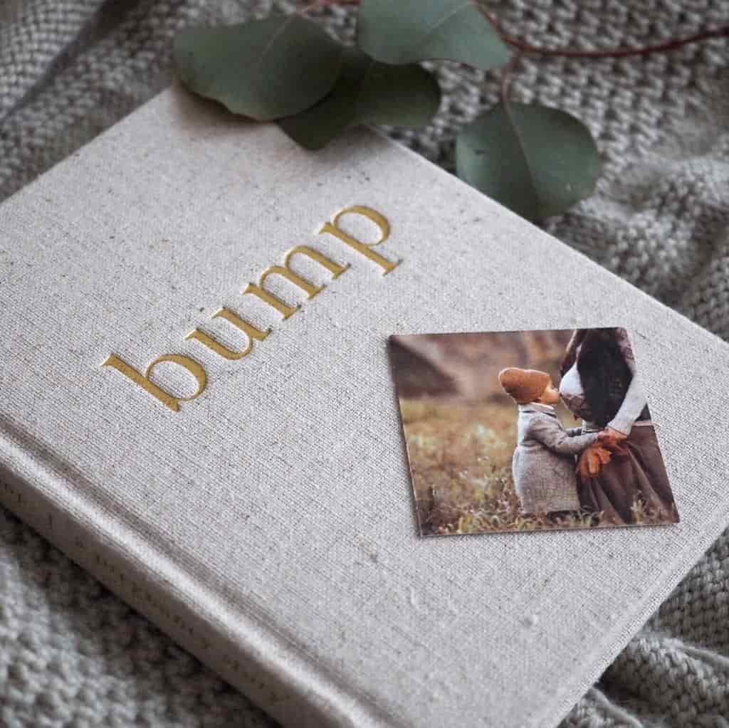 Meminio Bump Diary