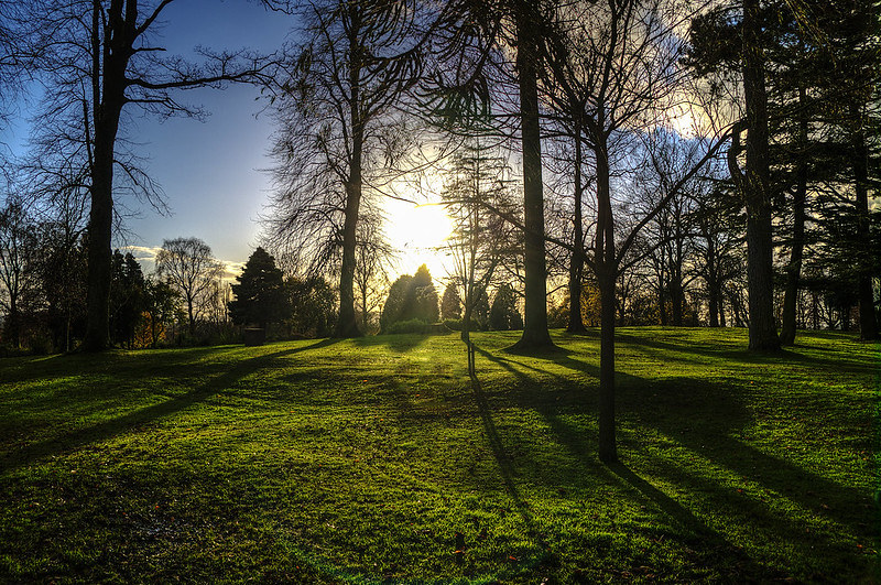 Pittencrieff Park landscape as sun sets.