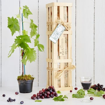 Grow Your Own Red Wine Gift Crate - The Gluttonous Gardener