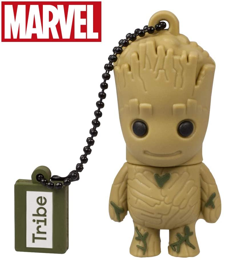 16 GB Groot USB Stick.