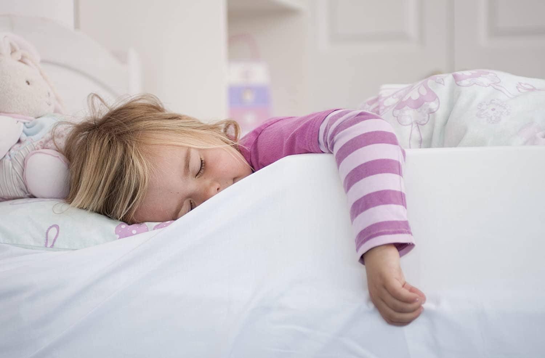 Purple Daises Foam Bed Guard Bed Rail