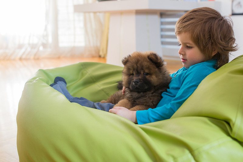 Best Bean Bag Chairs And Bean Bags For Kids That The Whole Family Will Love.