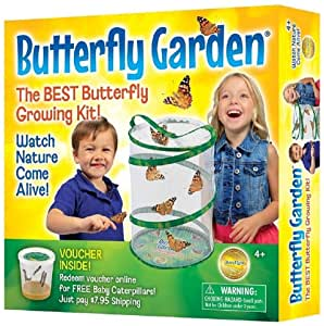 Insect Lore Butterfly Growing Kit.