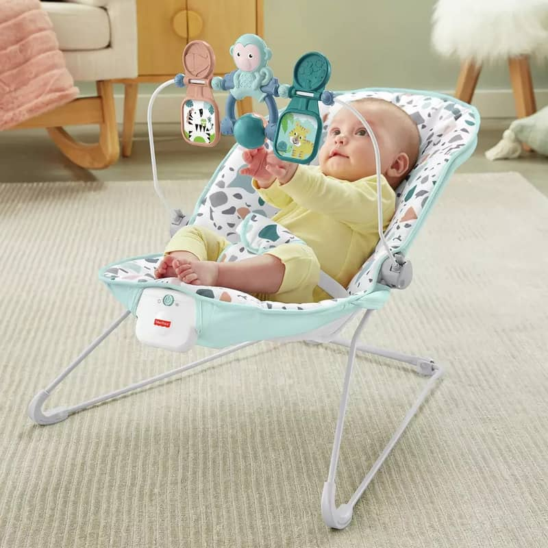Fisher Price Signature Terazzo Bouncer