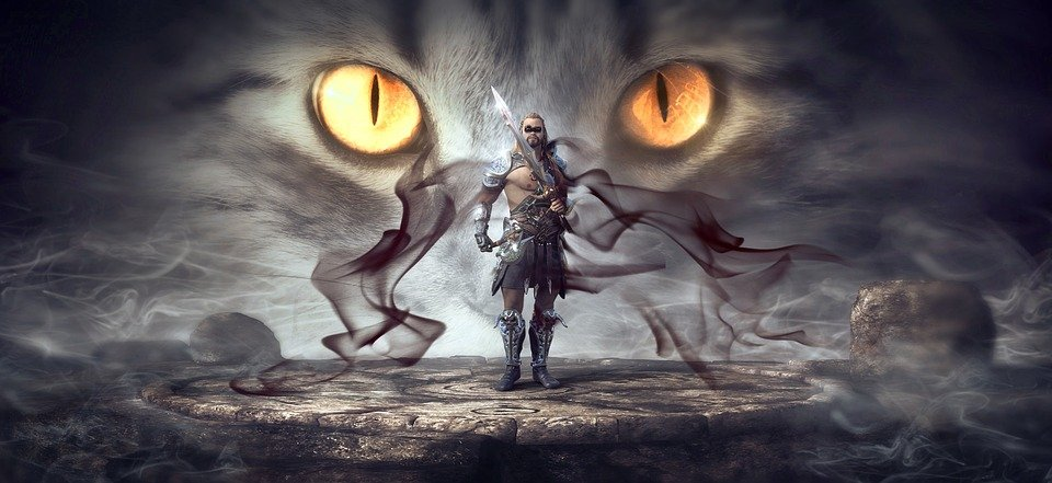 Catfolk are nimble warriors in the game