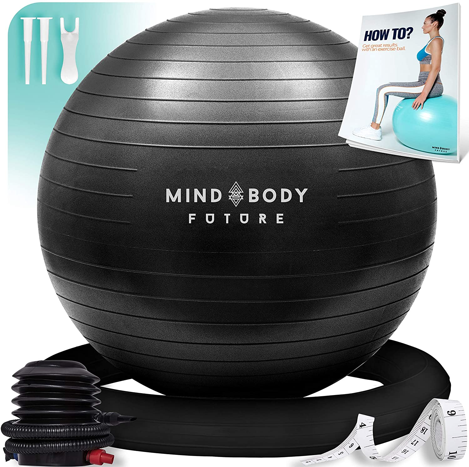 Mind Body Future Exercise Ball Chair.