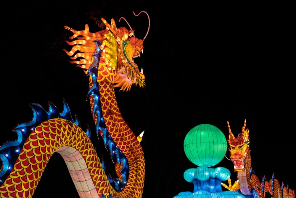 Everyone knows the winged dragon. But did you know, not all dragons in China have wings