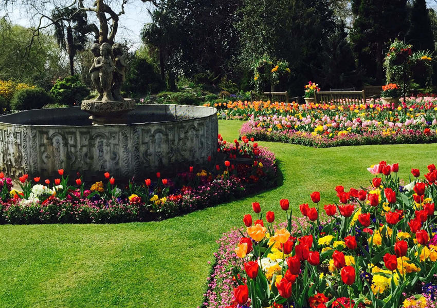 Red and yellow flowerbeds at Singleton Park in Swansea.