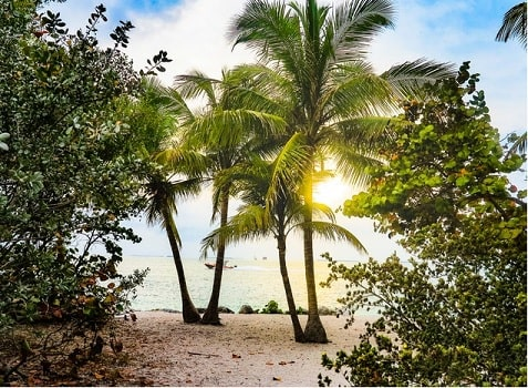 Florida is renowned for its tropical beaches, like this one in Key West.