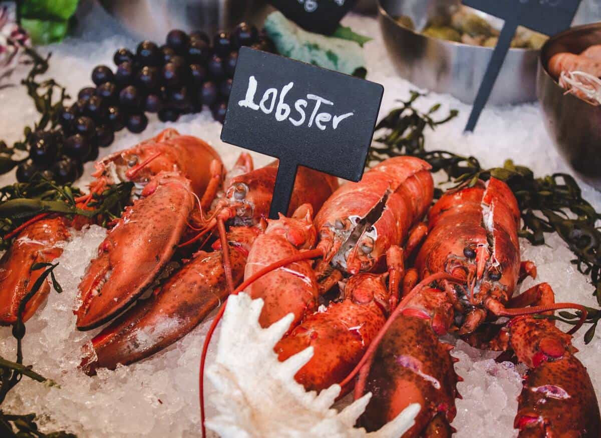 Funny lobster captions are a must with your Instagram stories of the yummy lunch.