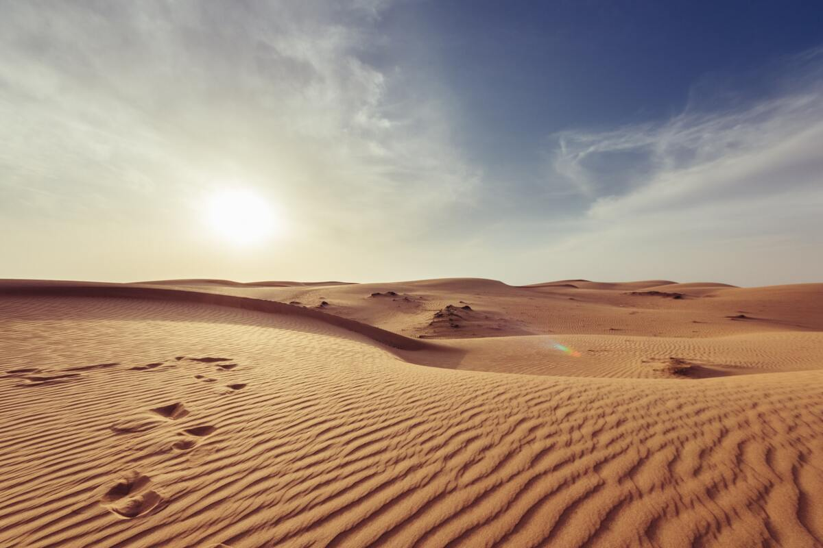 You can easily undersand puns that may be related to the desert.
