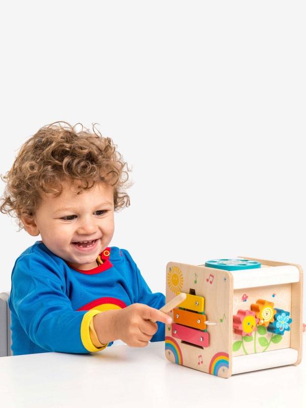 Le Toy Van Petit Activity Cube.