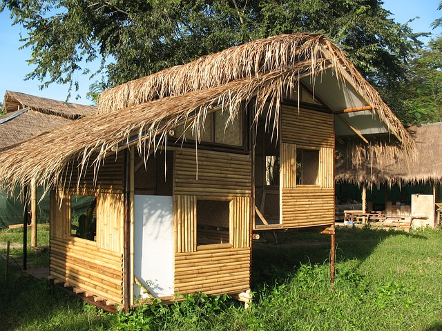 Bamboo is often used as a construction material for building homes.