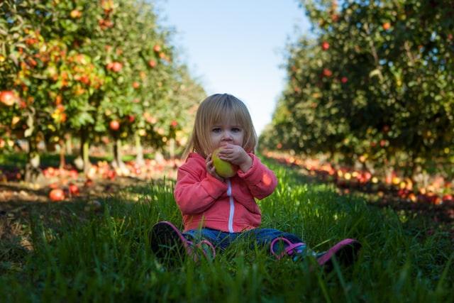 An apple pun can be a-peel-ing.
