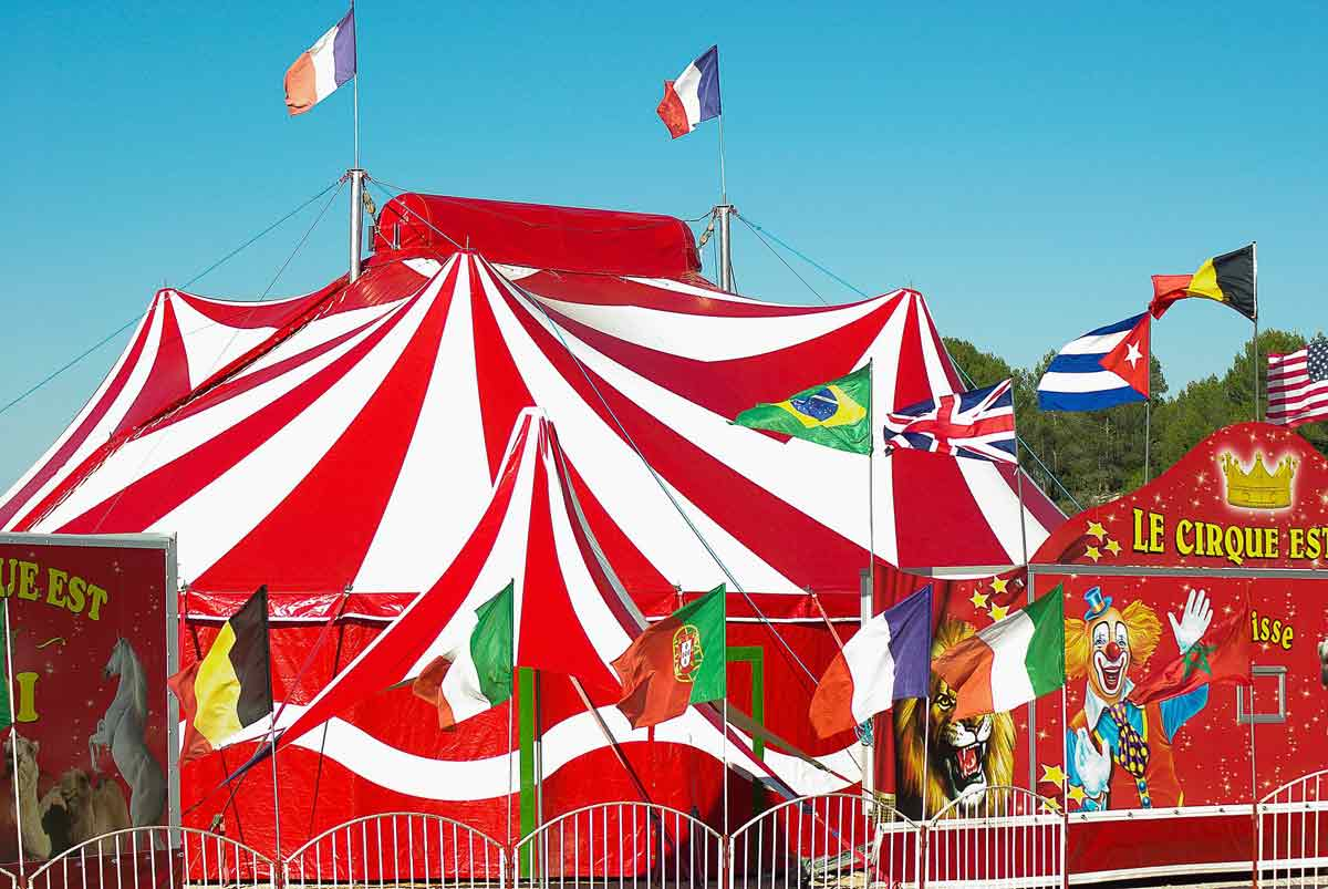 Many circus names are fun and magical.